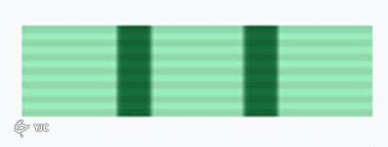 پشت پرده نشانهای نظامی ایران/ هر کدام از نشانهای نظامی چه معنایی دارند؟