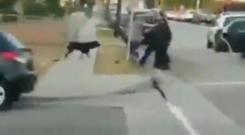 قتل وحشیانه سگ توسط پلیس آمریکا