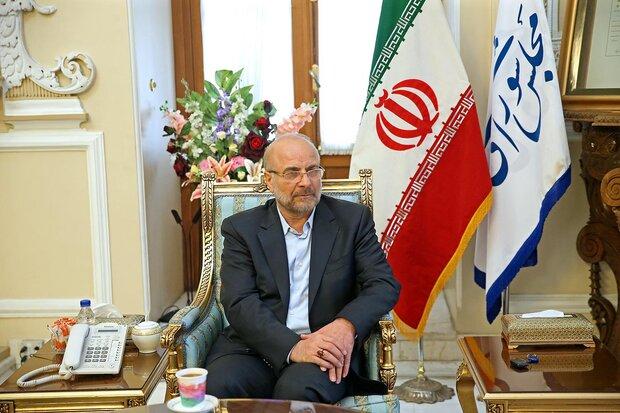 همکاری دوجانبه دومای روسیه و مجلس شورای اسلامی را مهم میدانیم