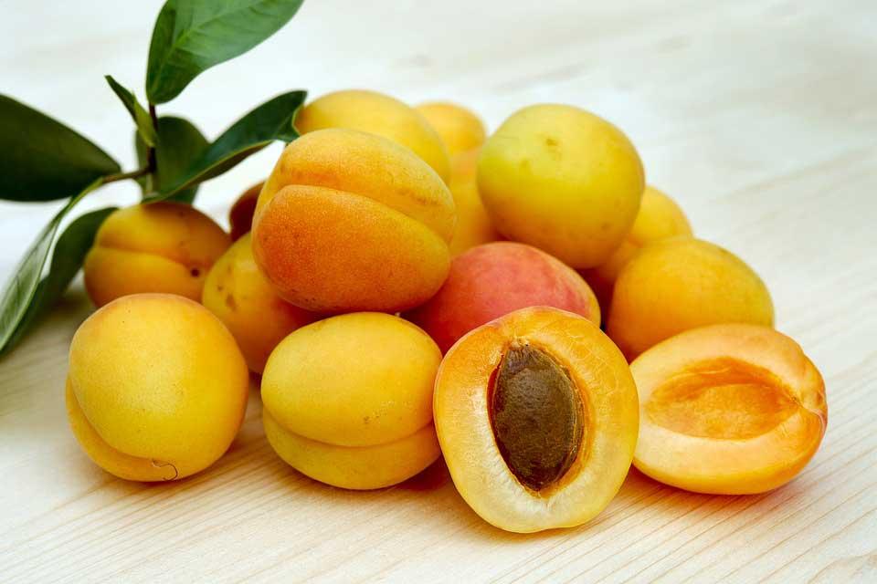 مصرف میوه طلایی تابستان را فراموش نکنید