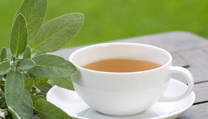 از ضدعفونی خانه تا تقویت سیستم ایمنی بدن با برگ این گیاه