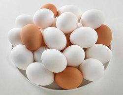 کاهش قیمت تخم مرغ در همدان