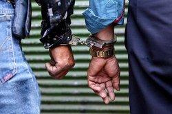 شناسایی و کشف ۲۰ فقره سرقت در استان همدان