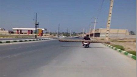 حمل کُنده ۴ متری درخت با موتورسیکلت! + فیلم