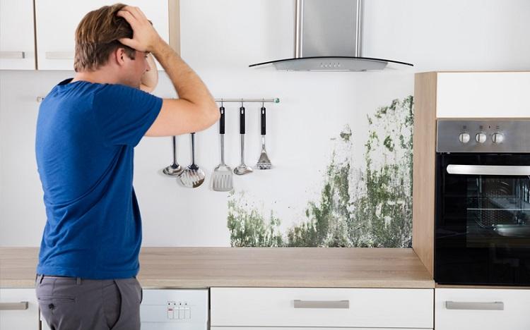 رطوبت و نم خانه را چگونه رفع کنیم؟