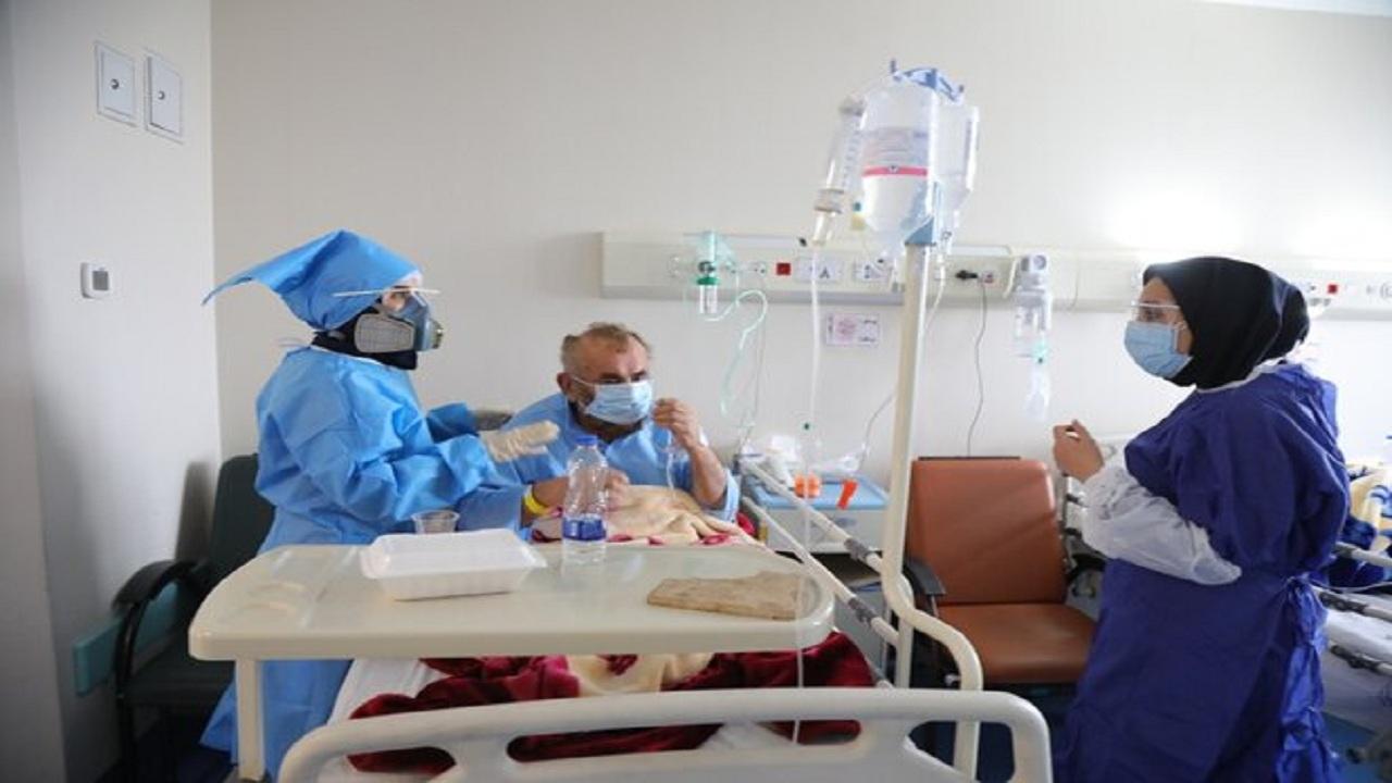 مبتلایان به کرونا در بوشهر