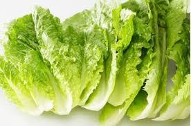 کاهش سریع فشار خون _سبزیجات پهن برگ