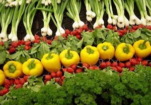 طرح ارتقاء سلامت محصولات کشاورزی