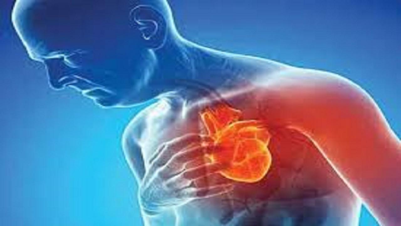 کشف راه جدید درمان بیماران قلبی