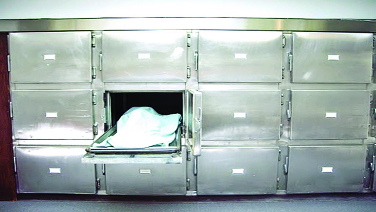 دفن «صنوبر» به جای یک بیمار کرونایی