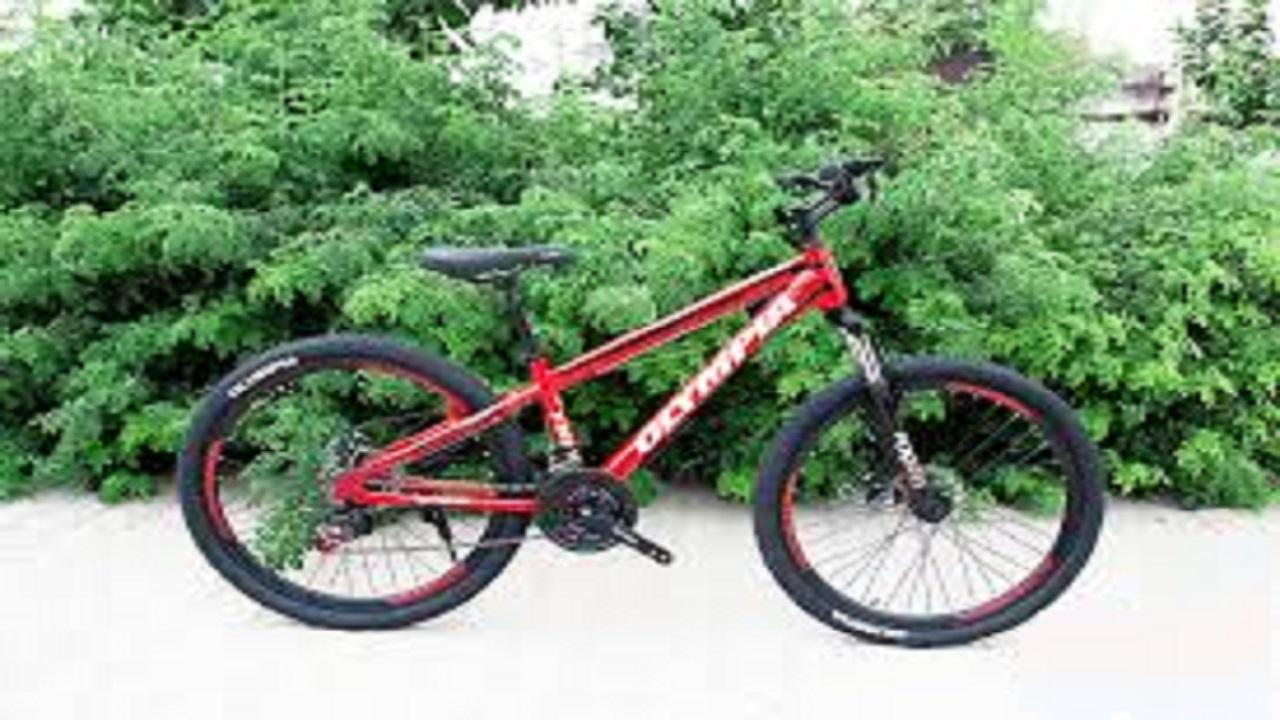 برای خرید دوچرخه چقدر پول لازم است؟