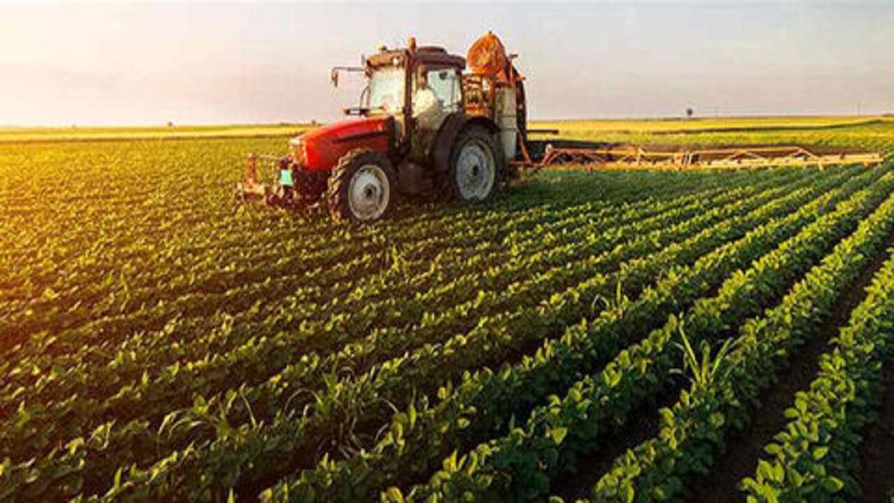 بررسی تاثیرات پرداخت یارانه به تولیدات کشاورزی
