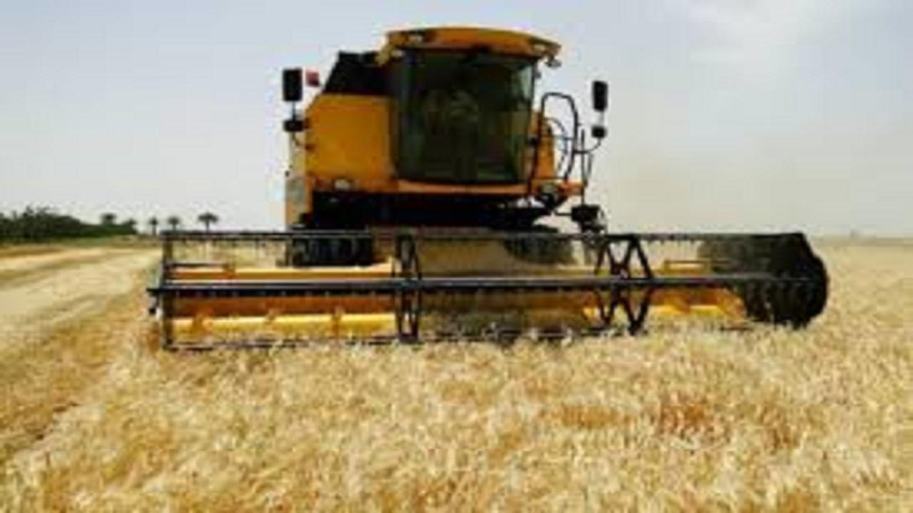 برداشت بیش از ۲۲هزار تن جو از مزارع بخش رخ تربت حیدریه