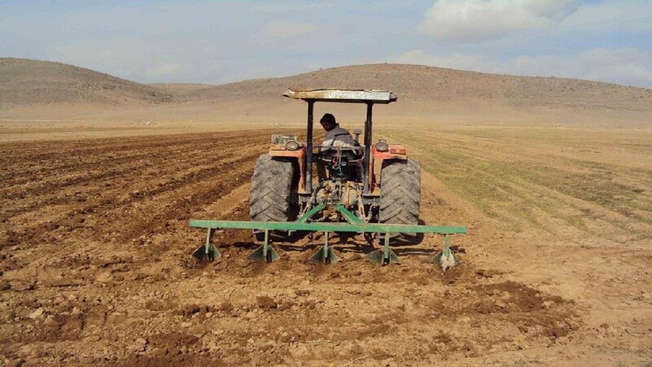 ۱۰۰ هزار هکتار محصولات زراعی پاییزه در سیستان وبلوچستان کشت میشود