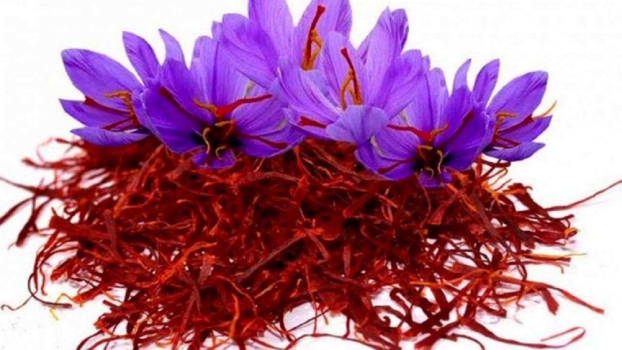 قیمت خرید زعفران چقدر است؟