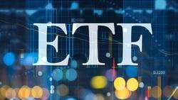 مقصر اصلی لغو عرضهETF دوم کیست؟/ تفاوت عرضه بلوکی با ETF سهام پالایشگاه ها