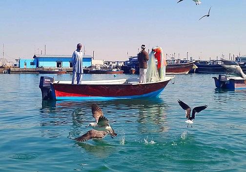 اجاره دریا و خوریات لقمهای چرب که کام سودجویان را شیرین و کام صیادان را تلخ میکند/ صیادان به کجا رو بیاورند؟
