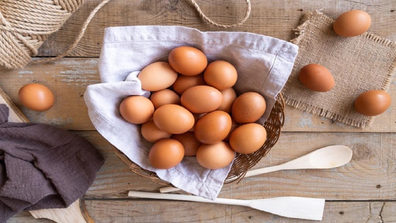 سرگردانی مرغداران از آشفتگی بازار نهادههای دامی / زیان 4 هزار تومانی در فروش هر کیلو تخم مرغ