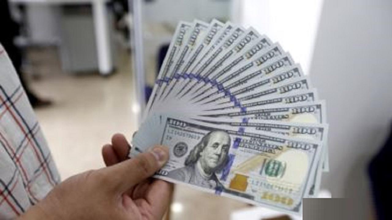 12410521 809 » مجله اینترنتی کوشا » کاهش قیمت ارز و سکه؛ خرید لوازم خانگی چقدر خرج دارد؟ 10