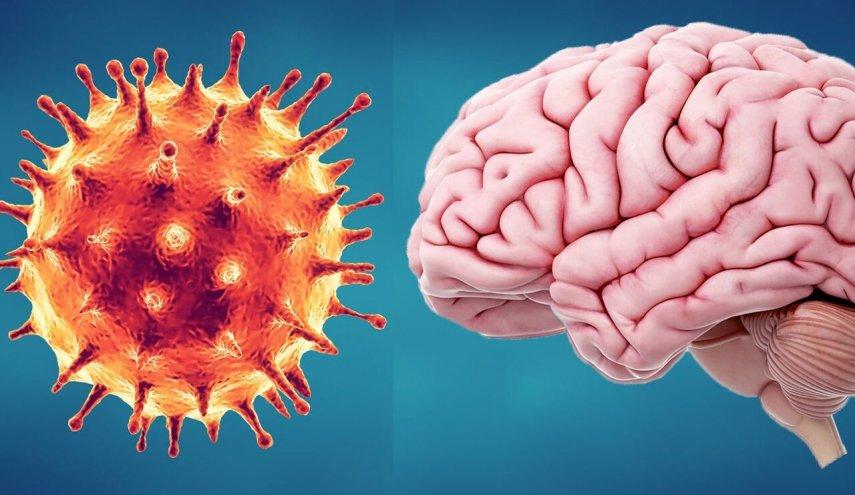 تاثیر ویروس کرونا بر مغز