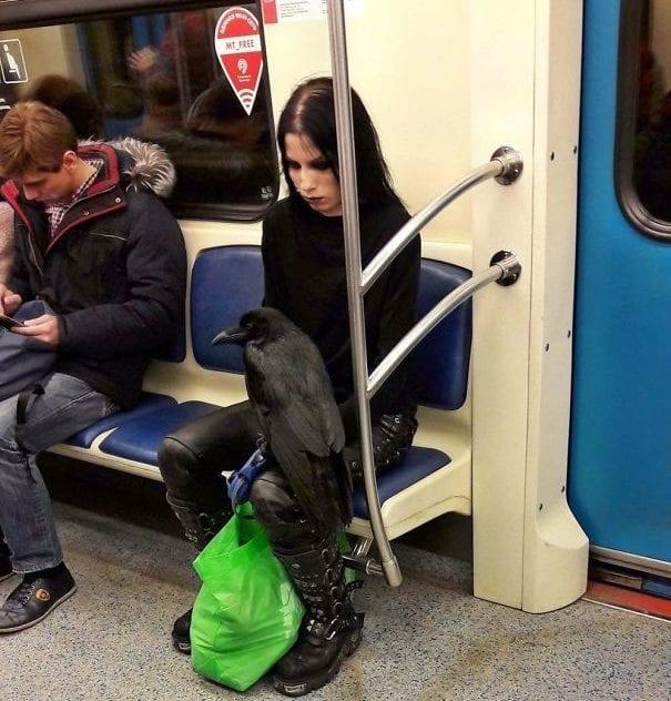 مسافران عجیب مترو