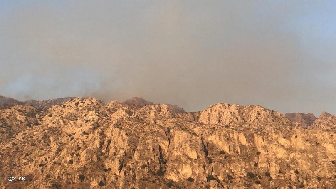 آتش در ارتفاعات بوشکان دشتستان شعله ور شد/ درخواست بالگرد برای انتقال نیرو