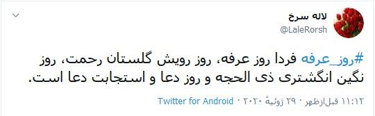 امسال تنها حاجی صحرای عرفات، امام زمان (عج) است/ عرفه یک میانبر شناخت