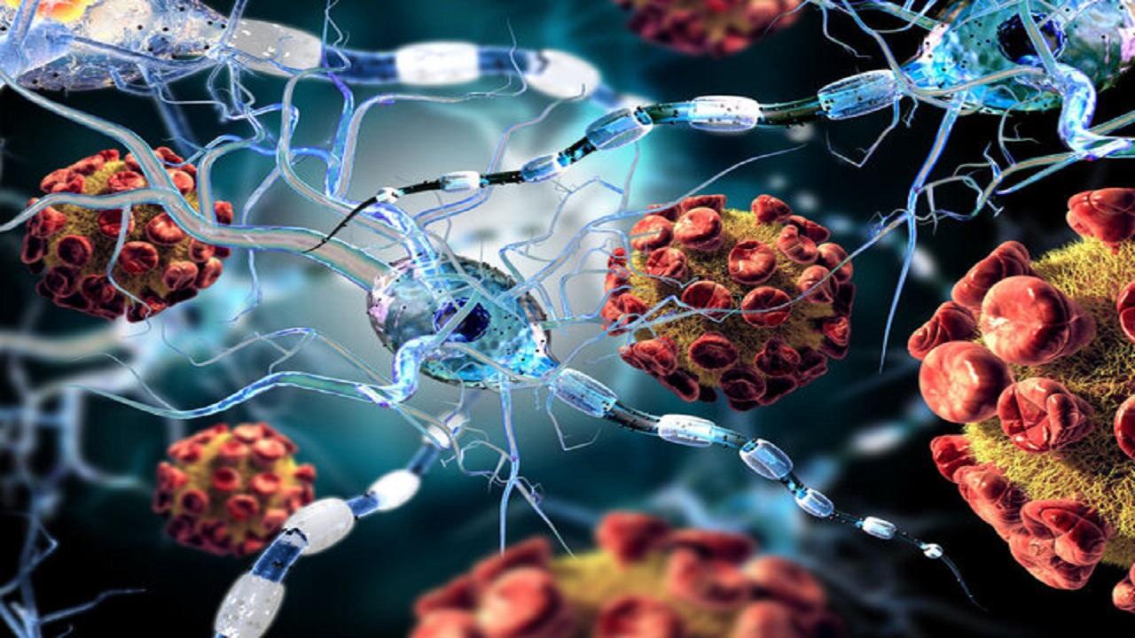 استراتژی ویروس کرونا برای حمله به بدن کشف شد