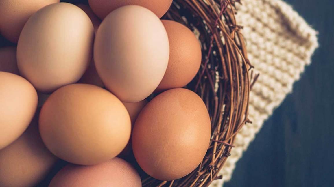 ۹ ماده غذایی حیاتی برای ریکاوری بدن پس از ابتلا به کرونا