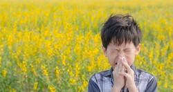 احتمال ابتلا به آلرژی در متولدین کدام فصل بیشتر است؟