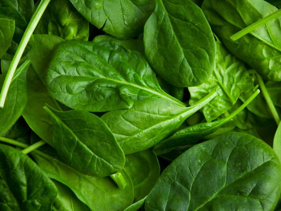 گیاهی سحر آمیز برای تقویت سیستم ایمنی بدن