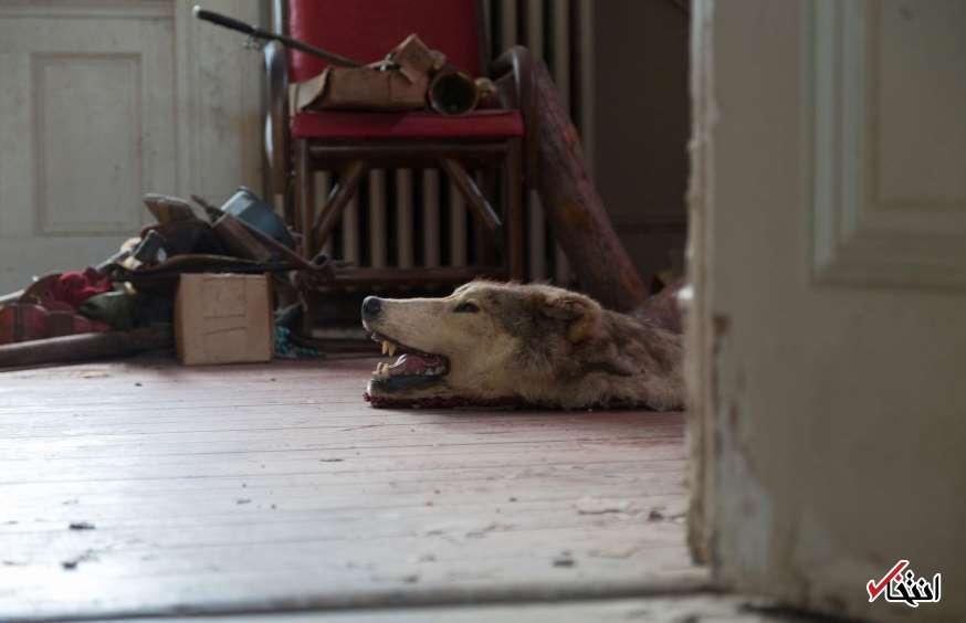 خانه وحشت در ویرجینیا+تصاویر