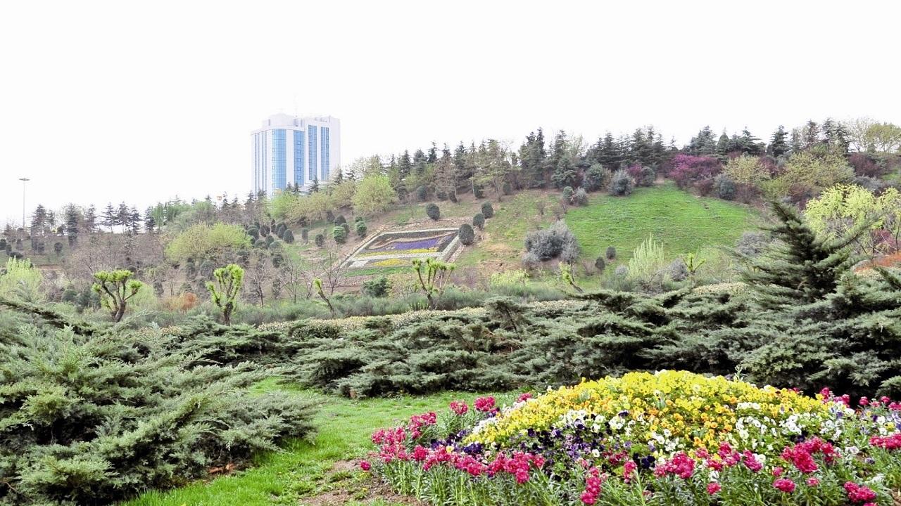 بوستان آزادگان منطقه 7 ظاهرا نیاز به آبیاری قوی دارد