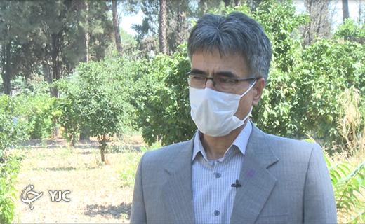 ابوطالب قزلسفلو مدیر کل منابع طبیعی گلستان
