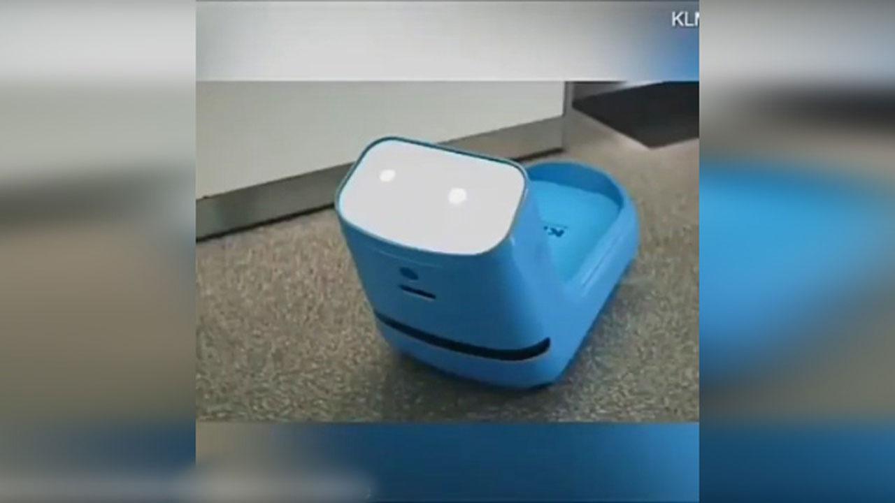 ربات کمک رسان به مسافران در فرودگاه