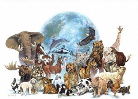 خجالتی ترین گونه طبیعت در ایران را بشناسید