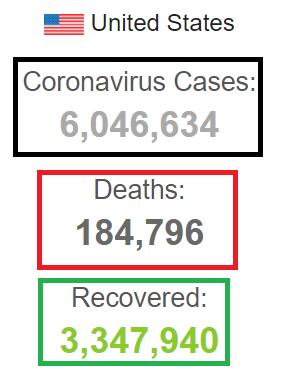 بیش از ۶ میلیون مبتلا به کرونا در آمریکا