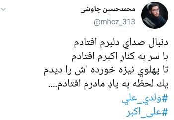 دلنوشته های کاربران بمناسبت شهادت علی اکبر