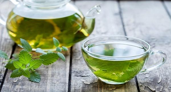 عفونتهای بدن خود را با این گیاه دارویی درمان کنید