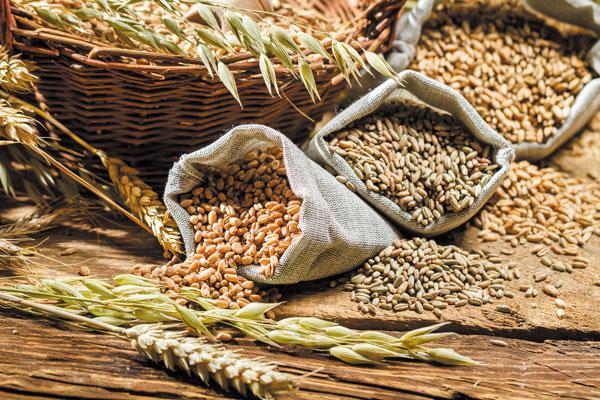 ۵ ماده غذايي حاوي کربوهيدرات مفيد براي ديابتيها/ تاپ