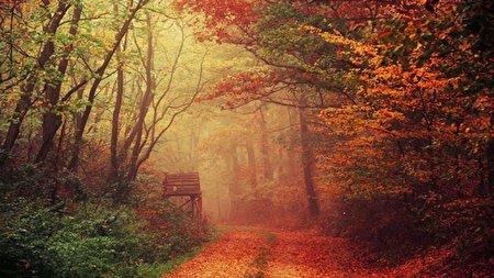 آغاز همزمان بهار و پاییز در جهان، امروز ساعت ۱۷!