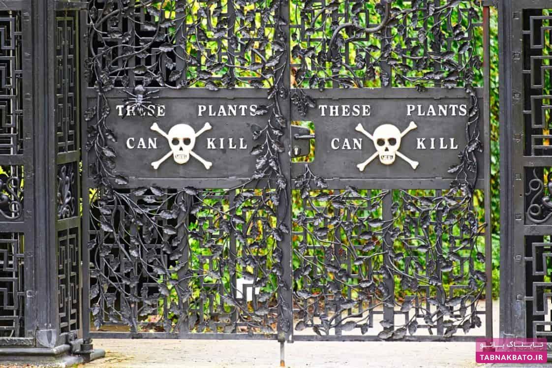 خطرناکترین باغ گیاهان جهان با چندین کشته در یک سال