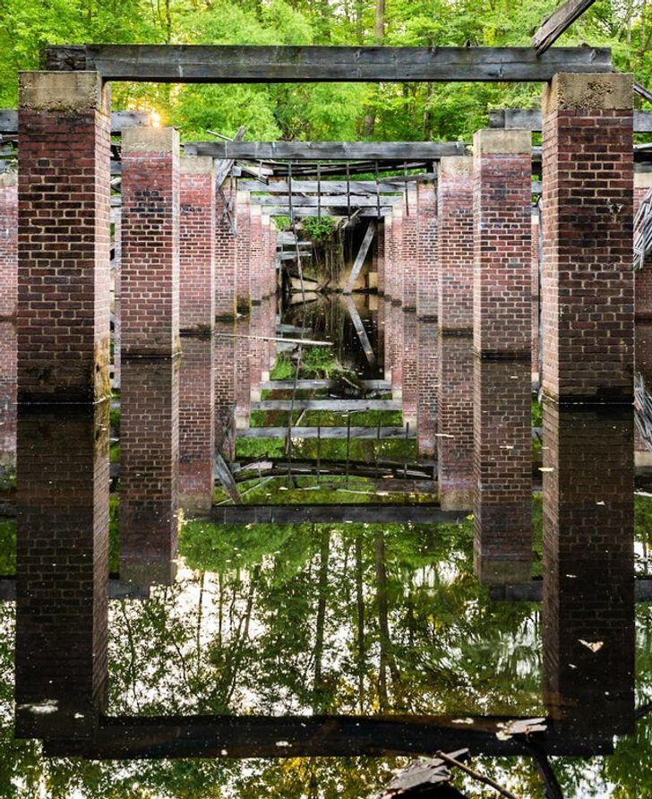 تصاویری که ثابت میکنند طبیعت همیشه راهی برای بازگشت دارد