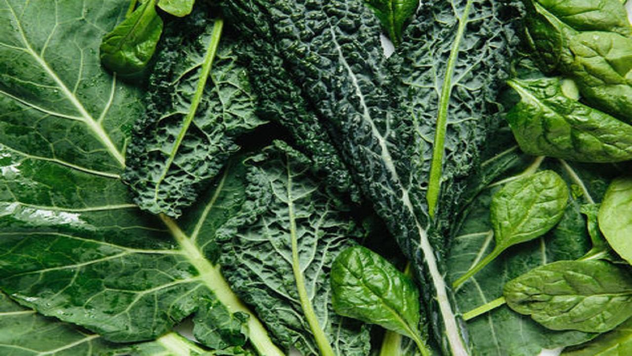 ۱۰ منبع گیاهی برای تامین آهن بدن