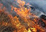 باشگاه خبرنگاران - آتش سوزی در جنگلها و مراتع کوه نور چرام