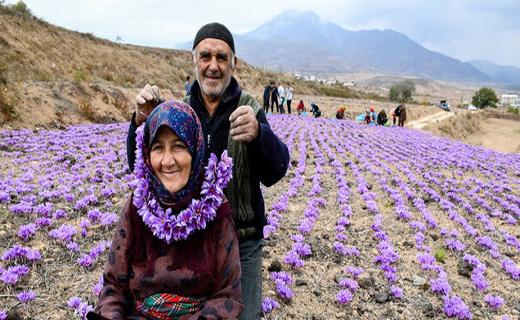 گردشگری کشاورزی، فرصتی برای بهبود فضای هویتی روستاها