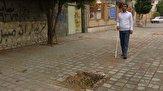 باشگاه خبرنگاران - ۱۴ درصد جامعه معلولان خراسان جنوبی را نابینایان تشکیل میدهند