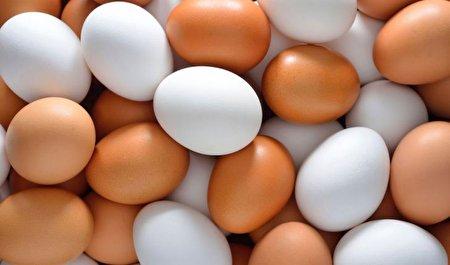 ۶ نوع تخم مرغ که از سم هم مضرتر هستند