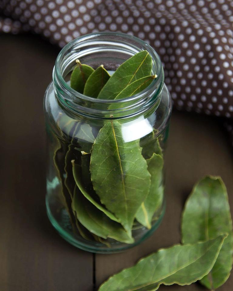 برگ بو؛ ادویهای شگفت انگیز و مفید/ راهی آسان برای درمان سرماخوردگی و آنفلونزا
