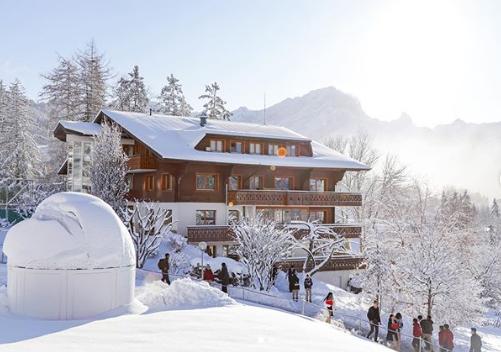 گرانترین مدارس دنیا/ موسسهای با پیست اسکی و دانشکدهای عجیب در کوههای آلپ